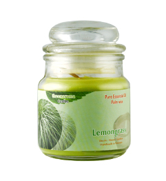 Candle lemongrass (Sả chanh)
